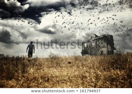 man abandoned rural house Stock photo © sirylok