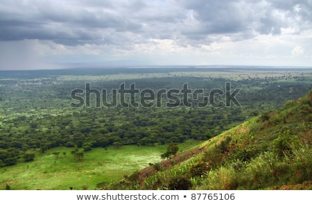 Queen Elizabeth National Park aerial view Stock photo © prill