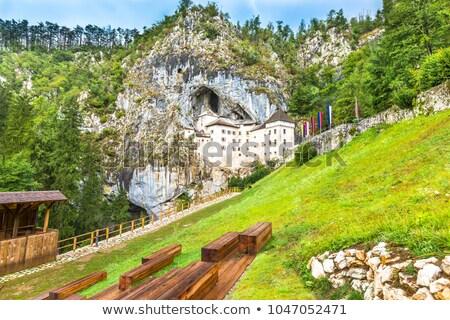 Kasteel Slovenië verticaal gebouw blad Stockfoto © macsim