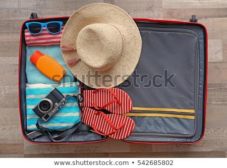 Vintage · кожа · чемодан · пляж · ходьбе · Stick - Сток-фото © hofmeester