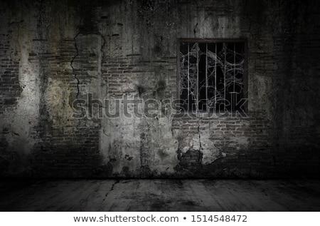 Spider стены тропические Карибы старые Сток-фото © ArenaCreative