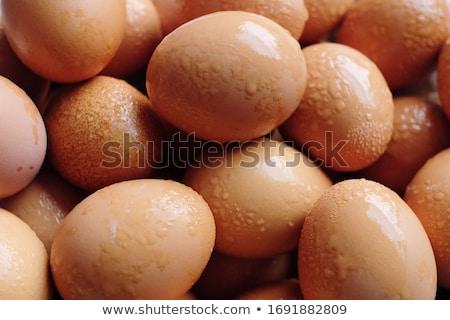 Closed up fresh chicken eggs Stock photo © punsayaporn