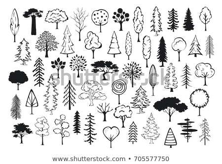 doodle tree Stock photo © netkov1