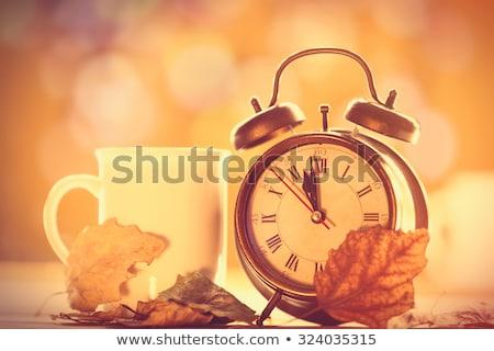 Oude wekker Blackboard exemplaar ruimte klok Stockfoto © marimorena