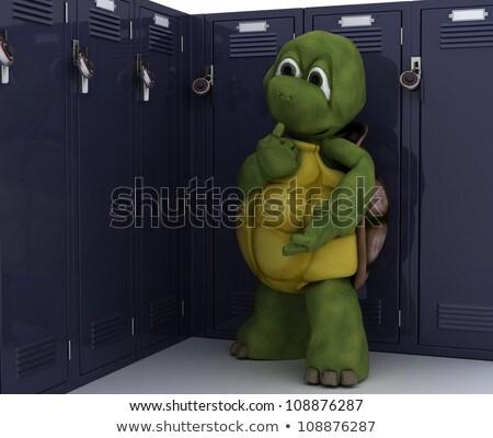 Teknősbéka iskola öltözőszekrény 3d render biztonság tornaterem Stock fotó © kjpargeter