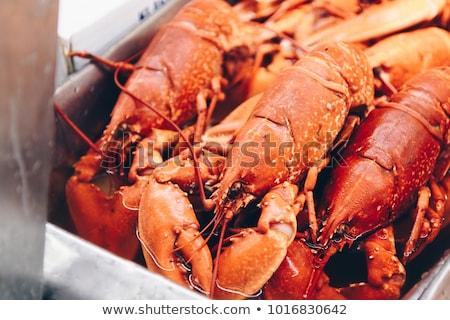 Prato fresco frutos do mar comida tabela pernas Foto stock © smuki