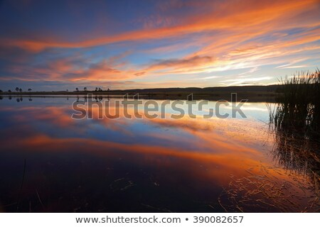 Sunset colour reflections in the lake Penrith Australia Stock photo © lovleah