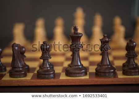 木製 チェスの駒 孤立した 白 戦争 再生 ストックフォト © tehcheesiong