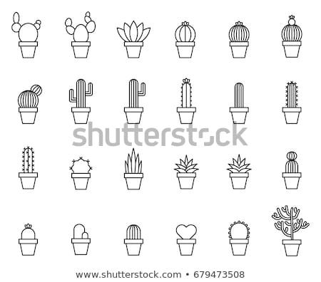 Stock fotó: Zöld · növény · edény · ikon · lineáris · stílus