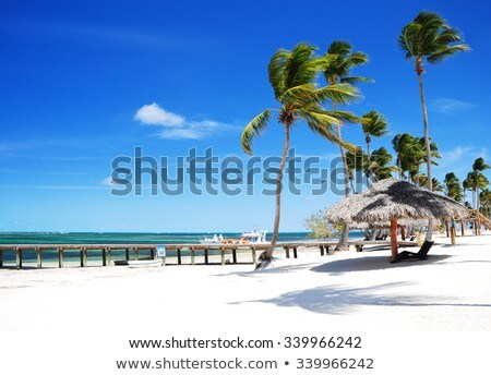 Dramatic cloudscape and sandy beach. Stock photo © alinamd