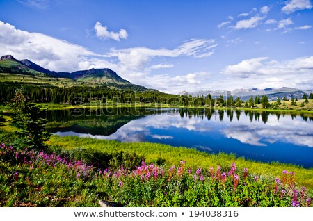 mountain lake in Colorado Stock photo © PixelsAway