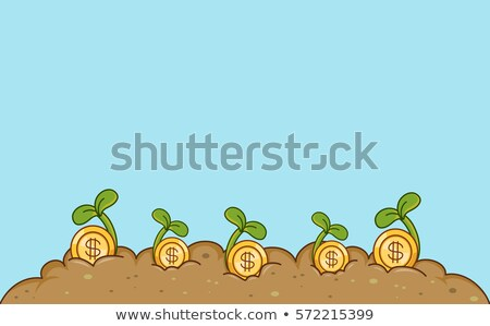 Gold Coins Agriculture Border Stock photo © lenm