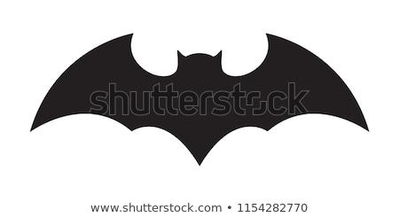bat black icon logo vector Stock photo © blaskorizov