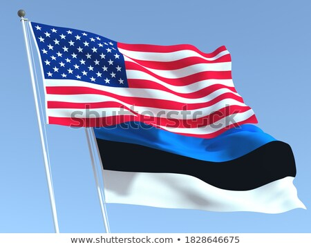 Twee vlaggen Verenigde Staten Estland geïsoleerd Stockfoto © MikhailMishchenko
