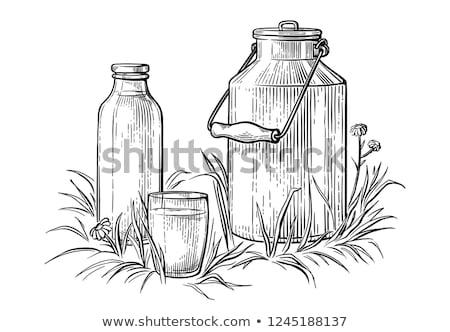 Schets kan melk verse melk land stijl Stockfoto © netkov1