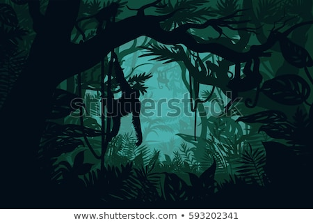 Monkey in jungle scene Stock photo © bluering