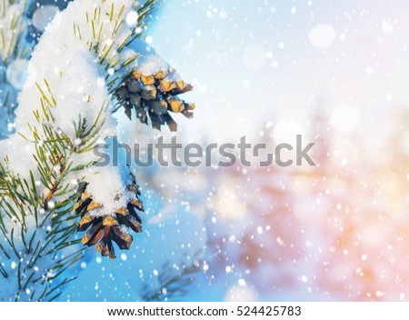 Winter holiday background, nature scenery with shiny snow and co Stock photo © Anneleven