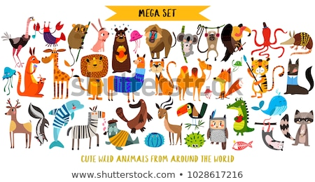 the set of the different forest animals stock photo © perysty