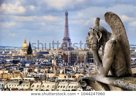 Gargoyle of  Notre Dame Cathedral church Stock photo © neirfy