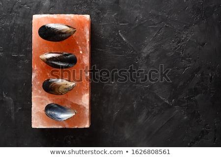 Salt bricks surface Stock photo © grafvision