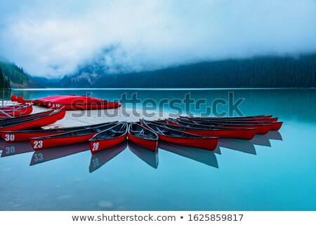 foggy morning on a lake Stock photo © PixelsAway