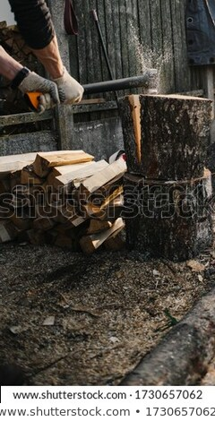 old axe and work gloves on a wood chopping block stock photo © mps197