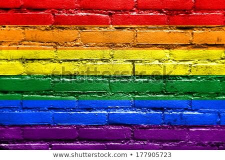 Homossexual arco-íris bandeira concreto parede superfície Foto stock © dolgachov