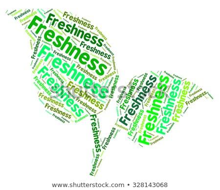 Fresche parola parole testo significato Foto d'archivio © stuartmiles