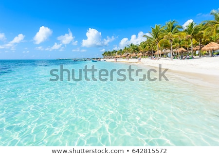 Caribbean Mexico Tulum turquoise tropical beach Stock photo © lunamarina