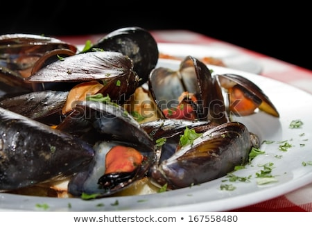 Mussels. Marine Food Stock photo © ConceptCafe