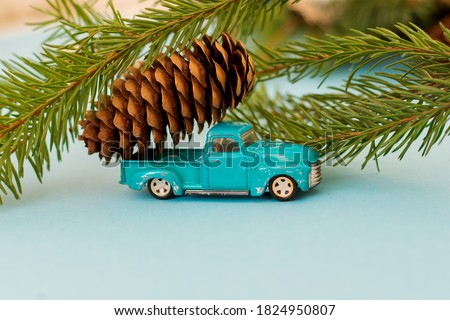 pickup pine cone stock photo © rghenry