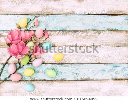 Roze paaseieren houten magnolia Pasen bloemen Stockfoto © Zerbor