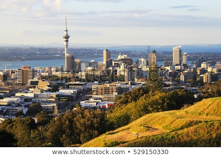 Kilátás tenger Új-Zéland város központ égbolt Stock fotó © daboost