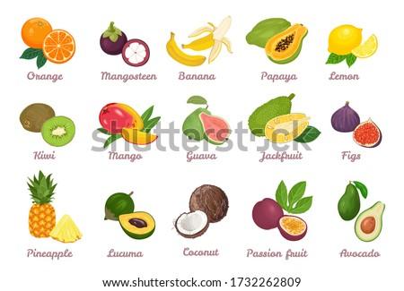 Ananas exotique juteuse fruits vecteur affiche Photo stock © robuart