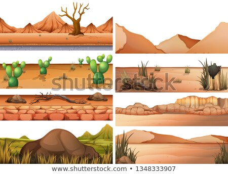 A droughty land at night Stock photo © bluering