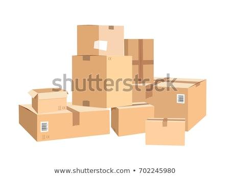 Zárva csomag ikon vektor négyszögletes csomag Stock fotó © robuart