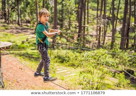 Stock photo: Portrait of cute little boy walks on a rope bridge in an adventure rope park