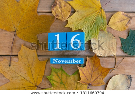 Cubes calendar 16th November Stock photo © Oakozhan