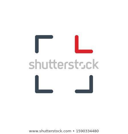 Recognition frame, iris biometric scan black flat icon. Identity scanning retina logo. Verification  Stock photo © kyryloff