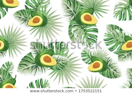 Half and whole avocado and palm leaves Stock photo © furmanphoto