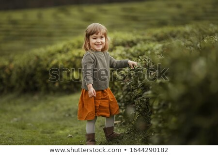Baby girl in warm clothes in the field with tea tree plants Stock photo © ElenaBatkova