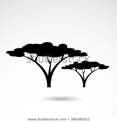 Savana árvore ícone vetor ilustração Foto stock © pikepicture