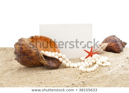 beach white sand pearl necklace blank copy space stock photo © lunamarina