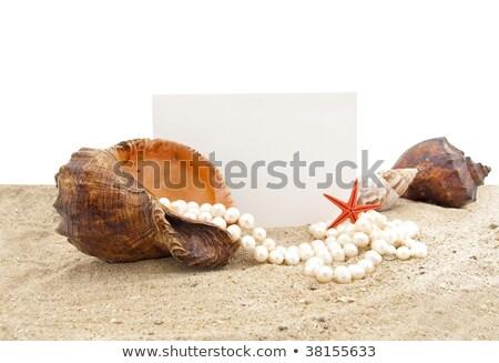 Plaj inci kolye bo çerçeve Stok fotoğraf © lunamarina