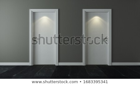 Two door under spot light with wall and black stone floor Stock photo © sedatseven