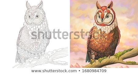 owl bird animal character coloring book page Stock photo © izakowski