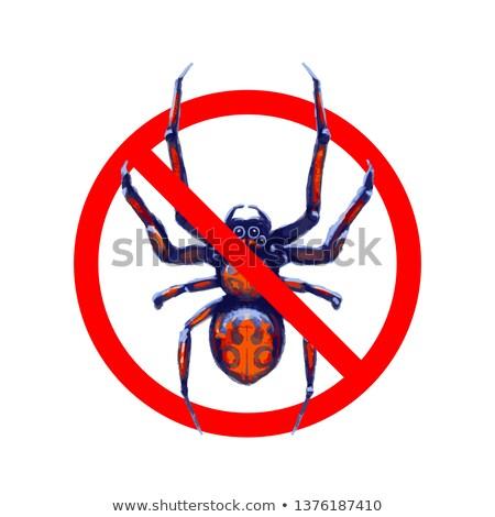 Geen exotisch spinnen Rood verboden teken Stockfoto © evgeny89