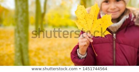 Little girl maple leaf outono infância temporada Foto stock © dolgachov