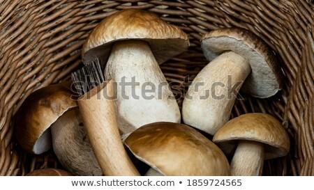 Kosár különböző ehető gombák kés főzés Stock fotó © dolgachov