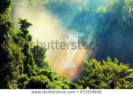 Waterfall in the Ecuador Stock photo © photoblueice